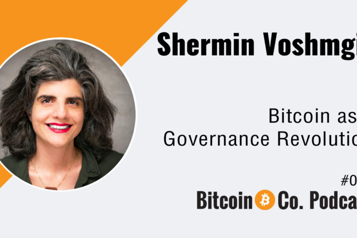 Podcast with Shermin Voshmgir