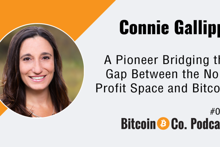 Connie Gallippi Bitgive Podcast