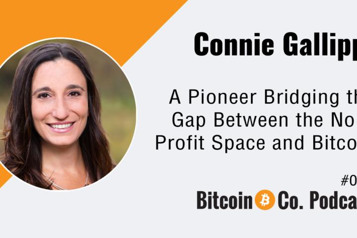 Connie Gallippi Bitgive Podcast