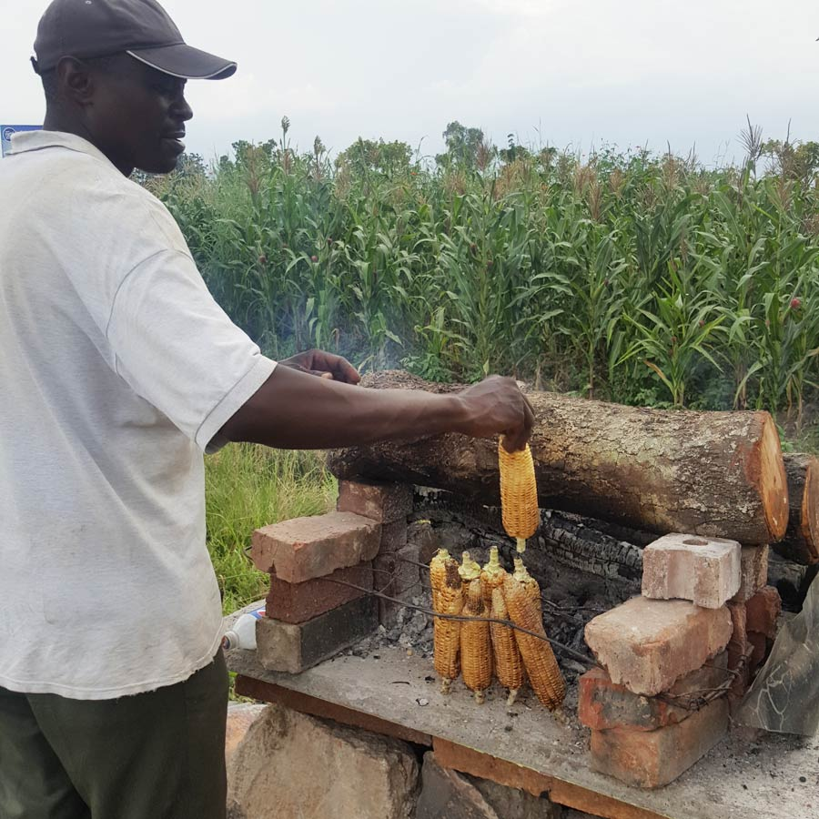 Roasting corn cobs by the street